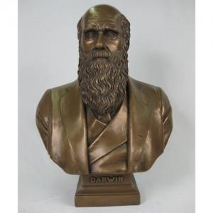 Charles Darwin Bust - Bronze Finish