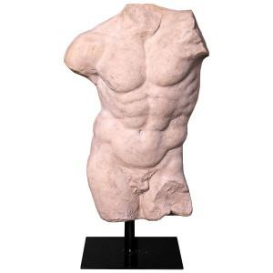 Andrea Male Torso - Roman Stone Finish 78cm