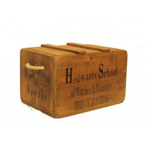 Vintage Chest, Hogwarts Spells & Potions