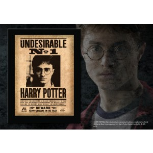 Undesirable No. 1 Harry Potter Plaque
