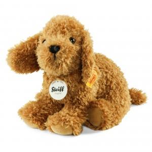 Little Bonny Puppy