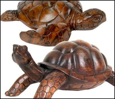 Tortoise / Turtle