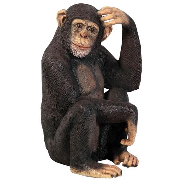 Chimpanzee Monkey Sculpture - 70cm