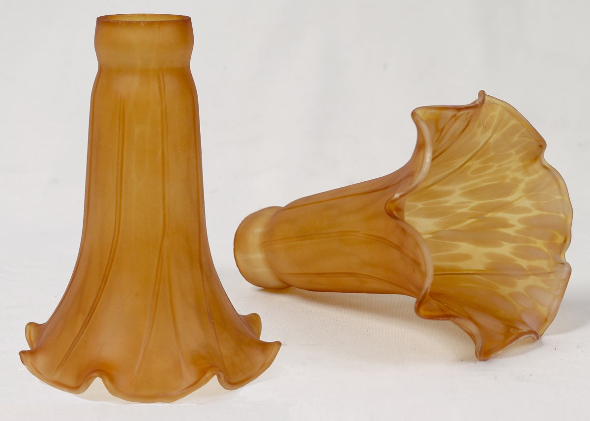 Pond Lily Shades - Amber - PAIR