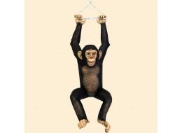 Hanging Monkey Chimpanzee