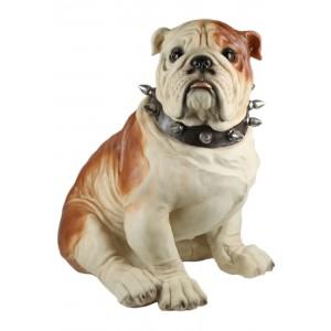 Bulldog Sitting 55cm