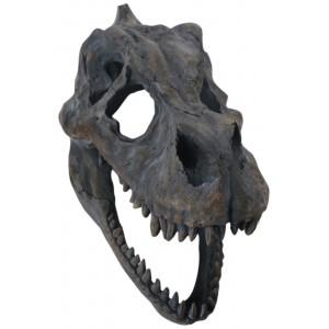 T-Rex Skull Wall Art 39.5cm