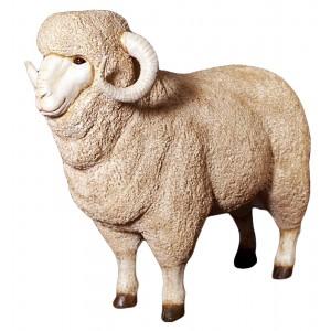Merino Ram Resin Statue