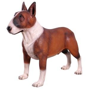 Bull Terrier Brown