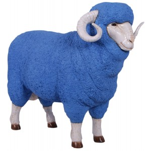 Merino Ram Resin Statue Blue