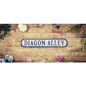Vintage Road Sign Diagon Alley