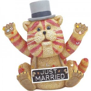 Cat in a Bag - Just Married
